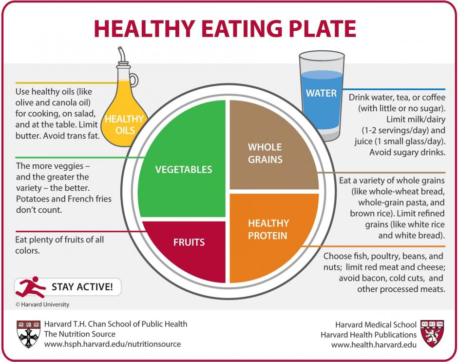 Infographic describing the proportions of vegetables, fruits, whole grains and protein necessary for a healthy diet.