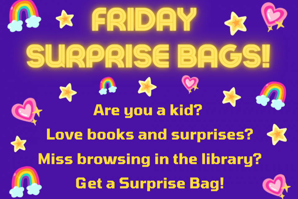 Friday Surprise Bags! Are you a kid? Love books and surprises? Miss browsing in the library? Get a Surprise Bag!